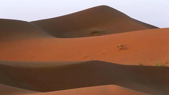 Marrakech Camel Trips: de lo lindo