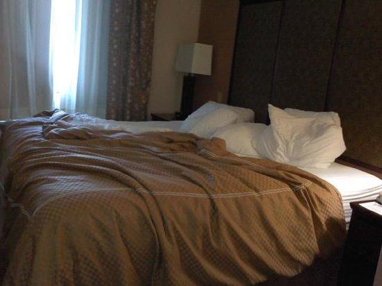 Comfort Suites Plano: Bedding