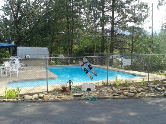 Shasta Lake Motel: Swimming Pool