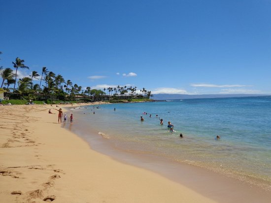 Sea House Restaurant Lahaina Maui Hawaii View From Outdoor Patio
