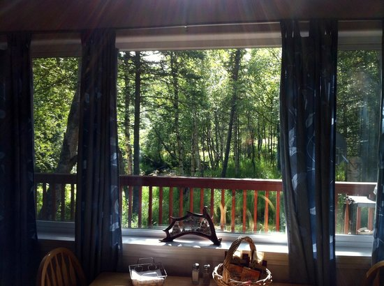 Alaska Creekside Cabins : Wasilla Creek