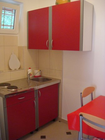 Guesthouse Lile: kitchen