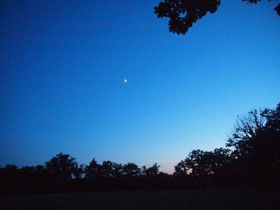 La Maison Verte : The clear night sky