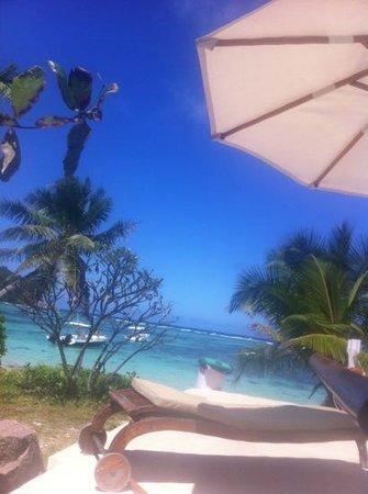 New Emerald Cove: bordo piscina