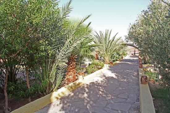 Kasbah Meteorite: le jardin