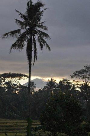 Villa Agung Khalia: View of Mt Agung