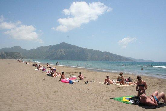 Iztuzu Beach Photo