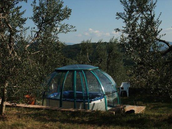 B&B Olivi e Dintorni : Olivi e Dintorni -  Idromassaggio
