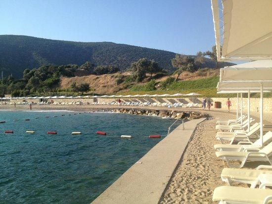 Club Med Bodrum Palmiye: la plage