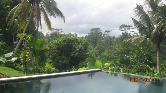 Ashoka Tree Resort Ubud: Pool