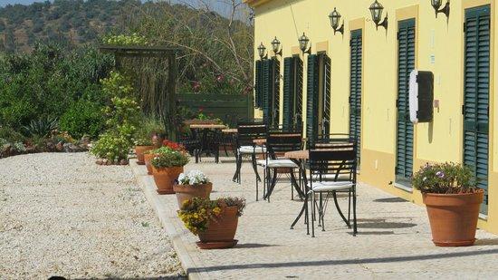 Duas Quintas: Breakfast on the terrace.