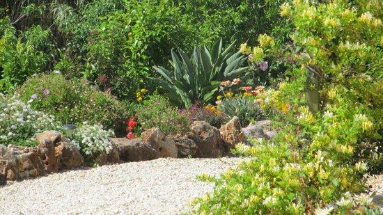 Duas Quintas: Garden