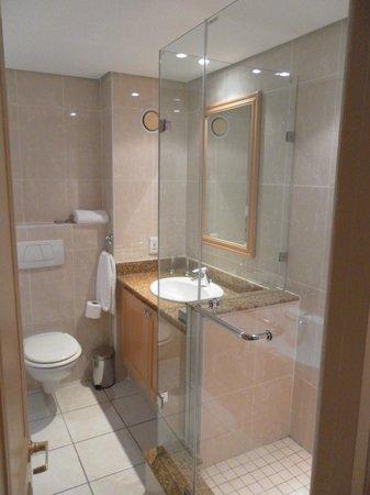 Protea Hotel Johannesburg Balalaika Sandton: Bathroom