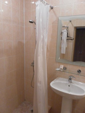 Maxima Zarya Hotel: Basic bathroom