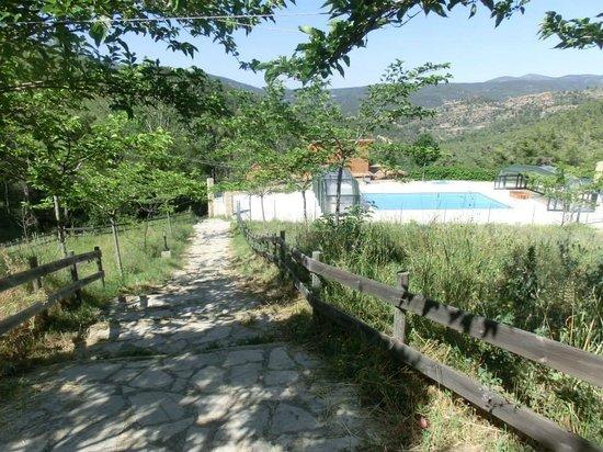 Mas de Borras: vista de la piscina