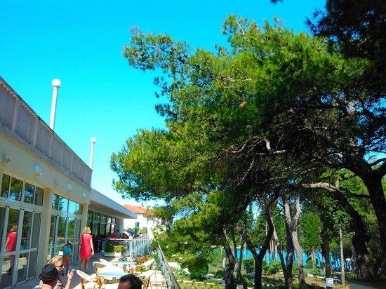 Hotel Amor : Restaurant