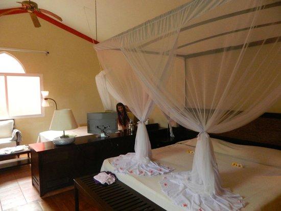 Diamonds Dream of Africa: the room