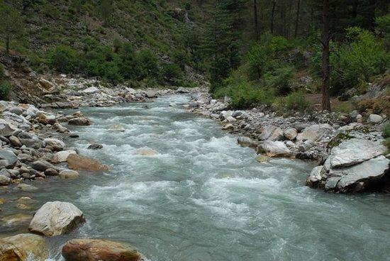 River Side Resort & Adventures: The Tirthan River