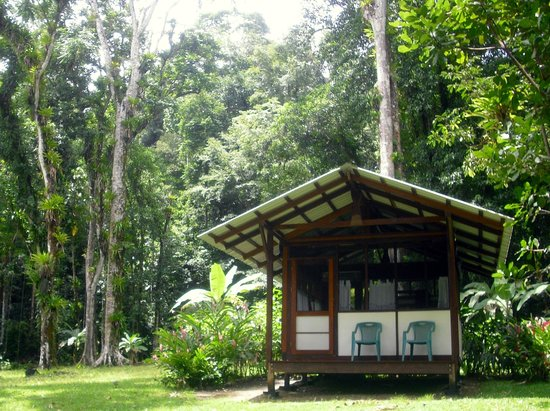 Saladero Eco Lodge: the mariposa