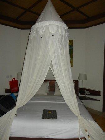 Ubud Villas and Spa : la nostra stanza