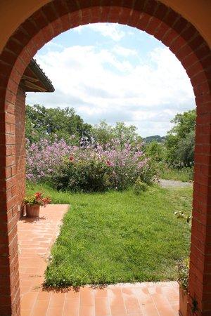 Agriturismo Esperia: giardino
