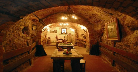 Aranda de Duero, España: Sala de Catas Bodega Don Carlos S.XV