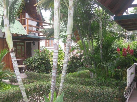 Balandra Hotel: jardines