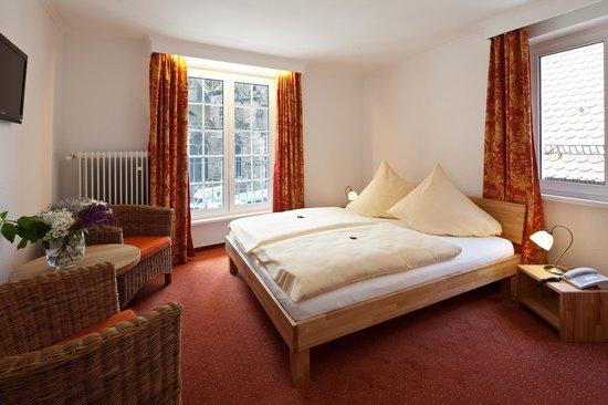 Hotel Rappen am Münsterplatz: Doppelzimmer
