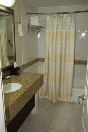 Beaches Ocho Rios Resort & Golf Club: Another view of the bathroom... Blah.