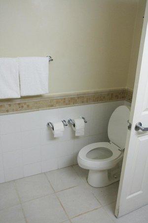 Beaches Ocho Rios Resort & Golf Club: Less than stellar Bathroom