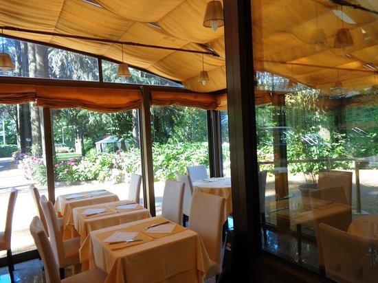 Air Hotel Linate : Veranda