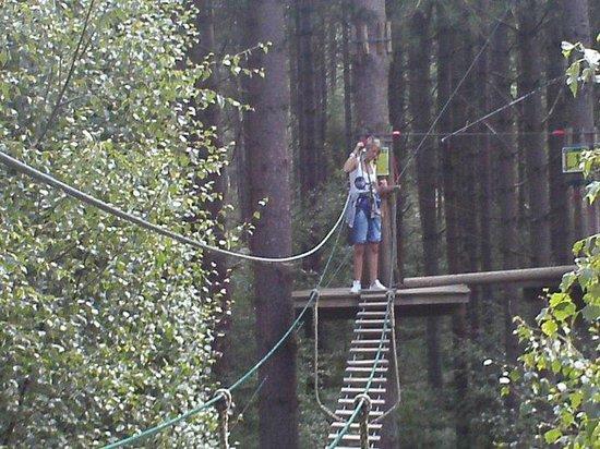 Go Ape Moors Valley: Swinging thru the trees