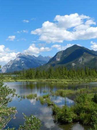 Vermilion Lakes: vermillion lake