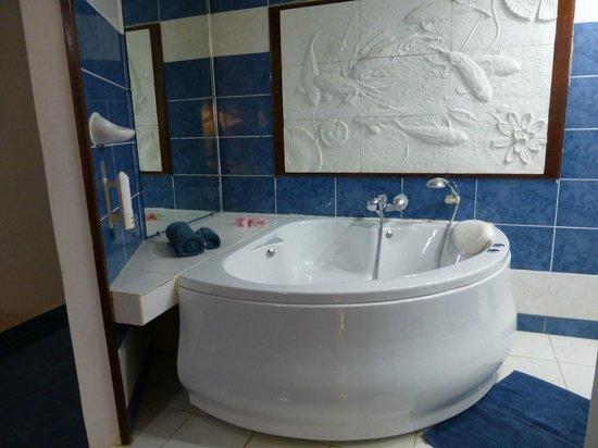 La Note Bleue Park Hotel: bagno