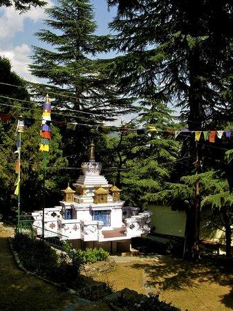 Tushita Meditation Centre : Tushita Stupa