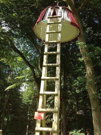 Woody Park : la plus haute tente suspendue