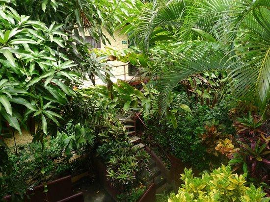 Hotel Villas El Parque: En sortant de la chambre.