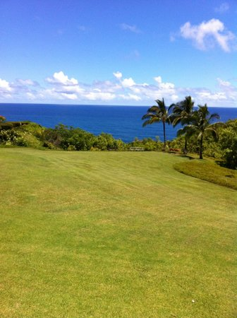 Cliffs at Princeville: Ocean view from 2nd floor bldg 6