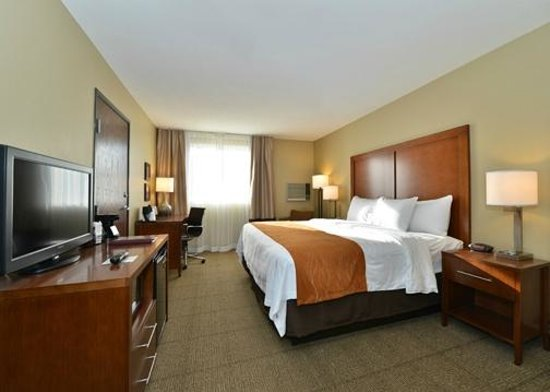 Comfort Inn & Suites: Standard King Room
