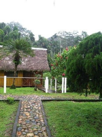 Yarina Eco Lodge: lovely yarina