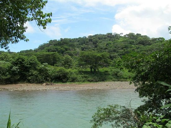 Villas Río Mar: A view of the river across the street from Villas Rio Mar, Dominical,CR