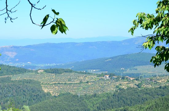 Tenuta Lonciano: View Tenuto Lonciano