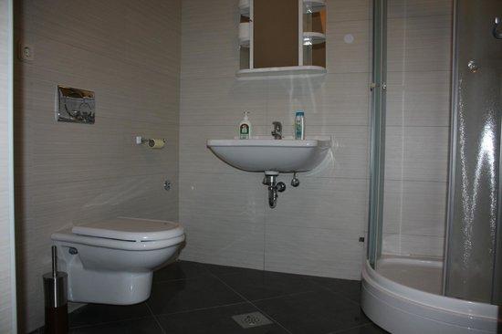 Hostel Elena : Bathroom