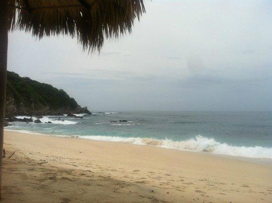 Manta Raya Hotel: Playa