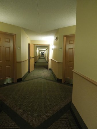 La Quinta Inn & Suites Denver Southwest Lakewood: Hallway