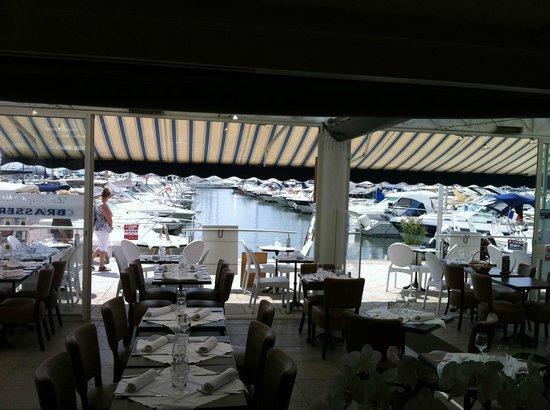 Restaurant Port Camille Rayon Golfe Juan Tripadvisor