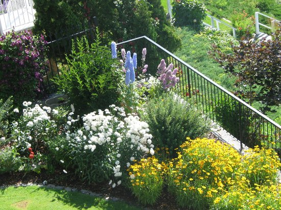 Willow Beach Bed and Breakfast : Flowering Shrubs and annuals near the Putting Green