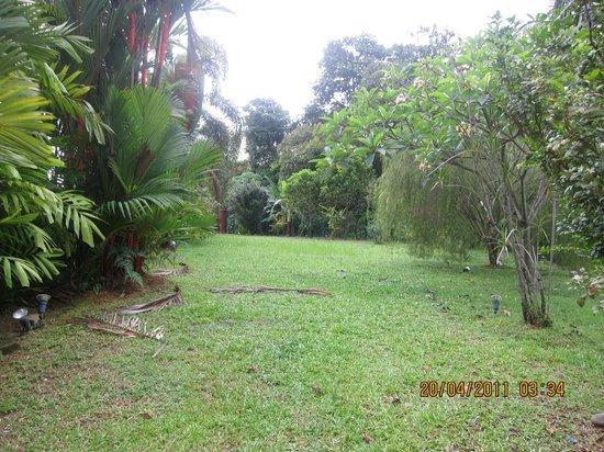 Villa D'Oria: Garden