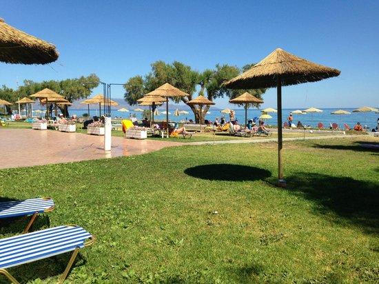Geraniotis Beach Hotel: Tuin