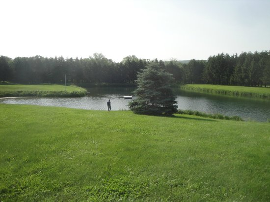 Pinehaven Bed and Breakfast: peaceful view